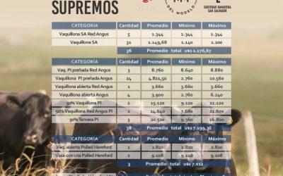 Vientres Supremos: 40 vientres a US$ 7.209 de promedio